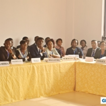 GIMUN18 Committee Sessions (5)