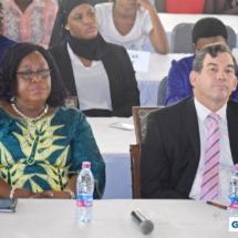 GIMUN18 Plenary Sessions (120)